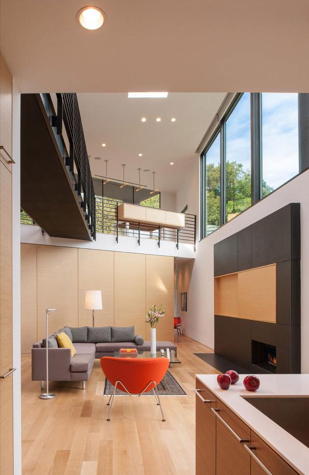 triangular-house-with-bridge-to-office-loft-overhead-3.jpg