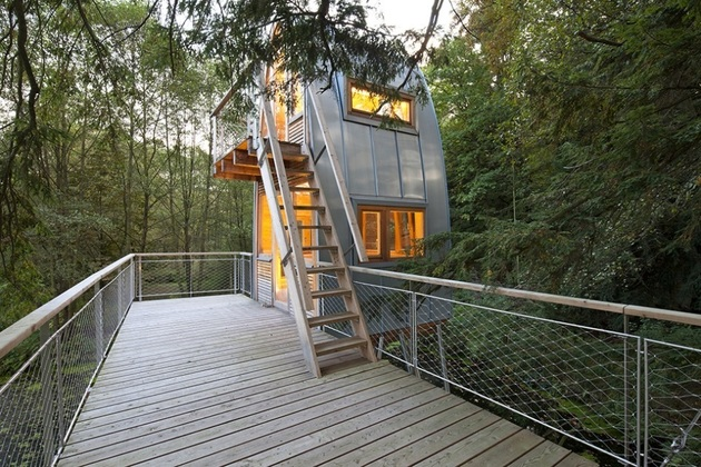 unusual-forest-cabin-on-stilts-over-pond-7-stairs.jpg