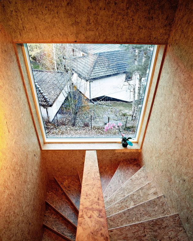 3-level-triangular-house-entry-under-pointed-corner-7-stairwell.jpg