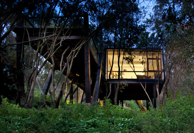 elevated walkway punctured trees forest cabin 2 site thumb 630xauto 43518 Forest Cabin on Stilts Accessed by Elevated Ramp