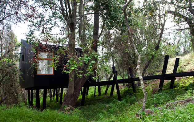 elevated-walkway-punctured-trees-forest-cabin-3-site.jpg