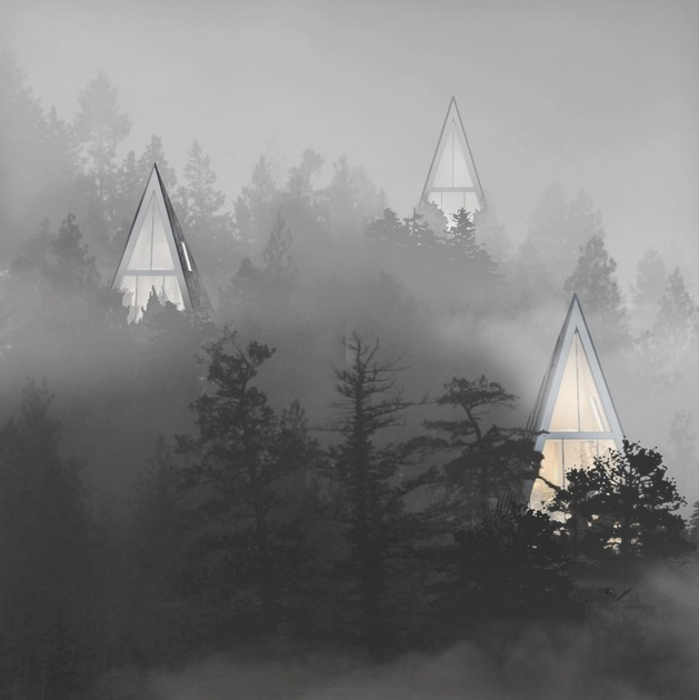 self-sustaining-woodland-house-inspired-by-trees-4-straight-mist.jpg