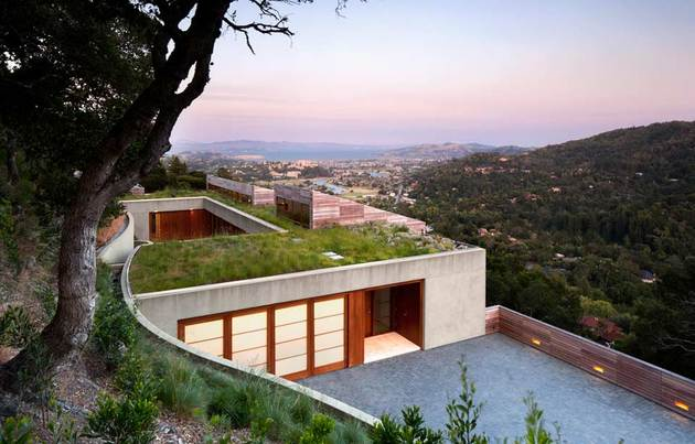 slope-house-living-roof-merges-hillside-3-living-roof.jpg