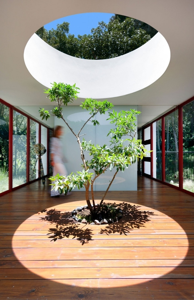 3a-homes-built-existing-trees-10-creative-examples.jpg