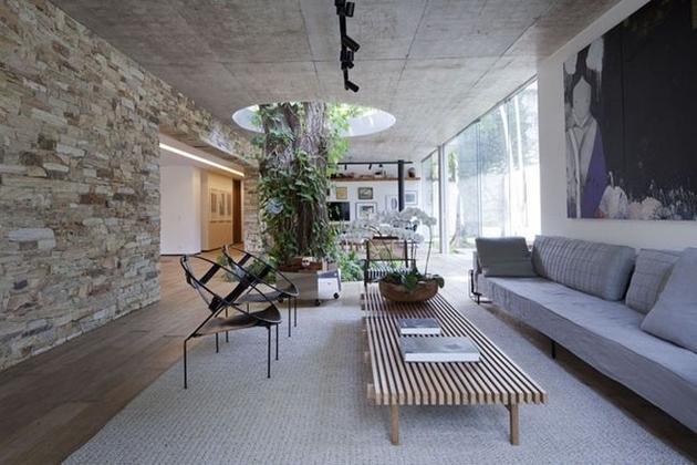 house-built-around-a-tree-2.jpg