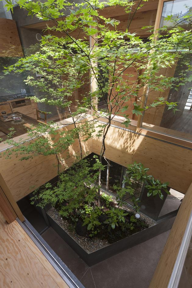 11-home-tree-garden-centre-house.jpg