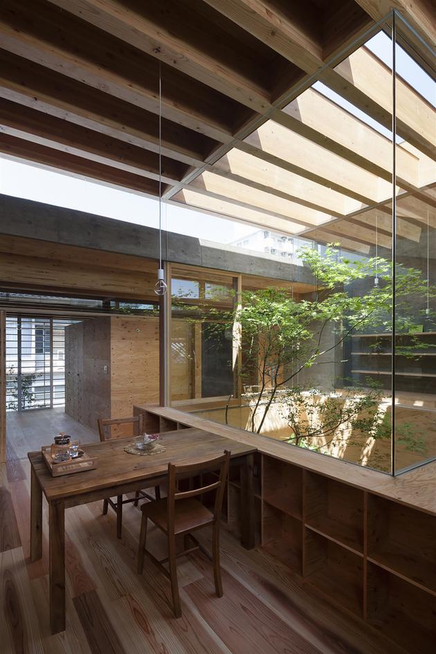 12-home-tree-garden-centre-house.jpg