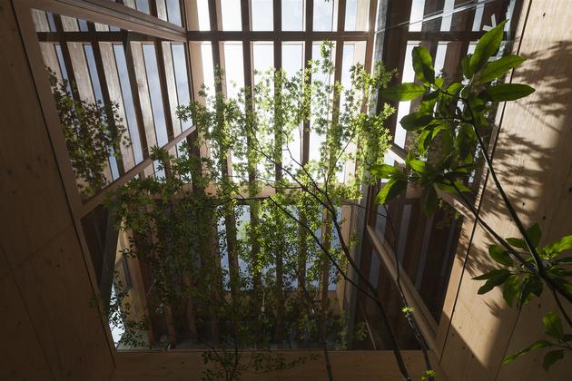 13-home-tree-garden-centre-house.jpg