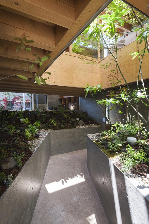5-home-tree-garden-centre-house.jpg