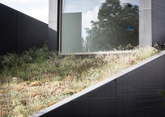 13-sloped-green-roof-split-level-home.jpg