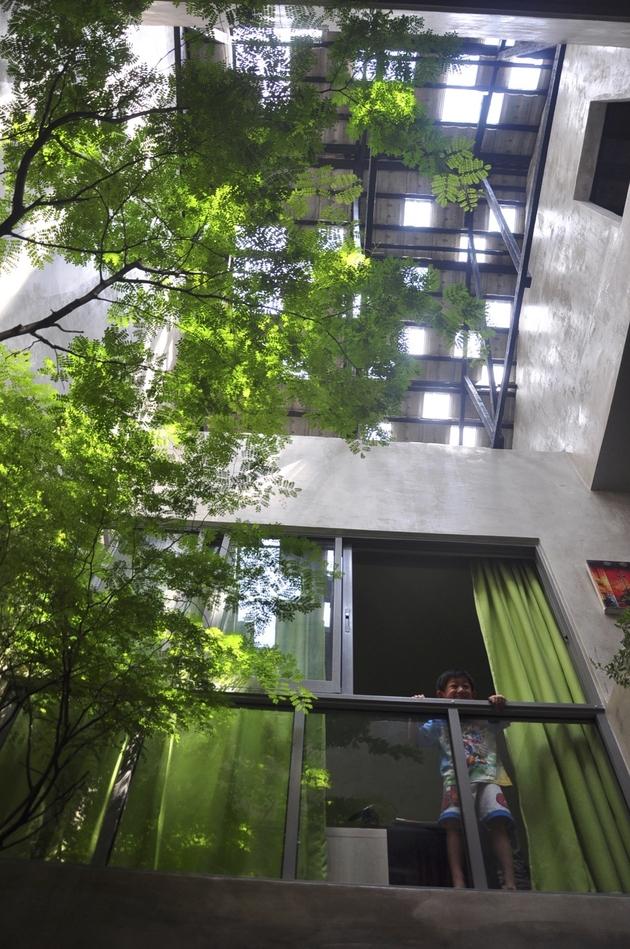 2 trees shrubs faux courtyard inside house thumb autox949 66091 Trees and Shrubs create Faux Courtyard Inside House