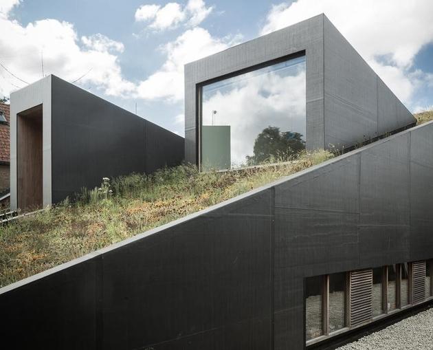 3-sloped-green-roof-split-level-home.jpg