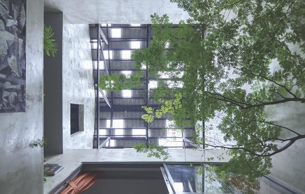 4-trees-shrubs-faux-courtyard-inside-house.jpg