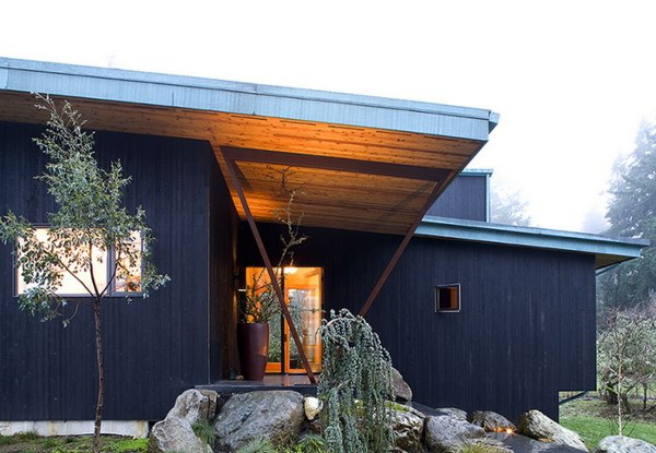 bird-house-5.jpg