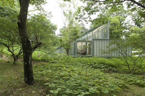 camouflage-house-3.jpg