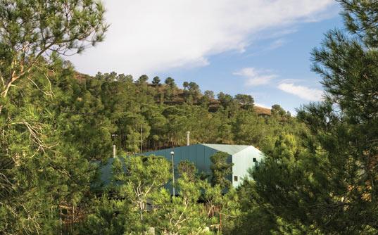 casa de los pinos 8