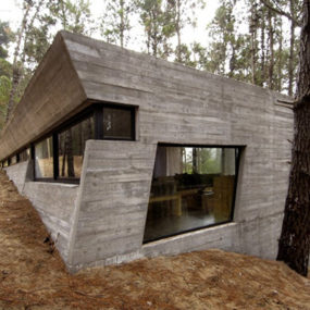 Amazing Concrete House Plan for a Rustic Forest Home in Argentina