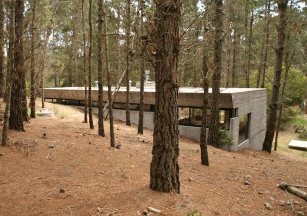concrete-house-plan-bak-architects-argentina-5.jpg