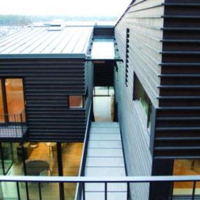 Contemporary Courtyard Design invites nature in …