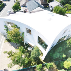 Curved wall house with forest views in the city