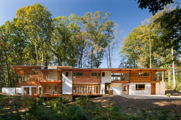 earth friendly contemporary wood home 2