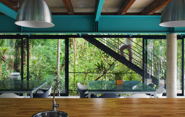 exotic jungle house multi level living glass walls 4