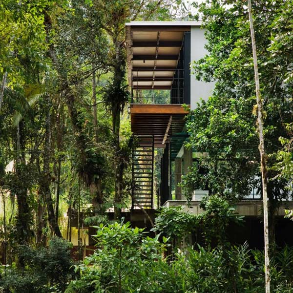 exotic-jungle-house-multi-level-living-glass-walls-7.jpg