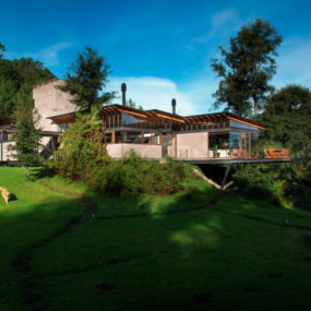 Forest house brings indoors out through glass walls, terraces