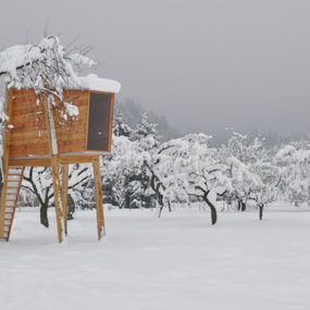 Free Standing Tree House: how to build pictures