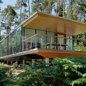 See-though Glass Box House has Best Views of the Forest