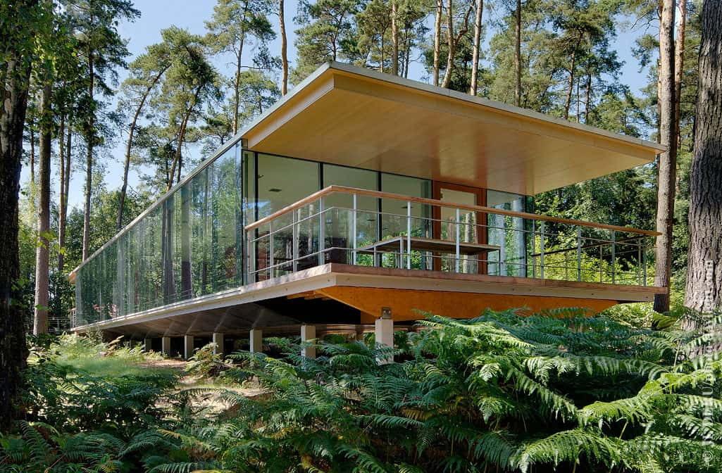 See Though Glass Box House Has Best Views Of The Forest
