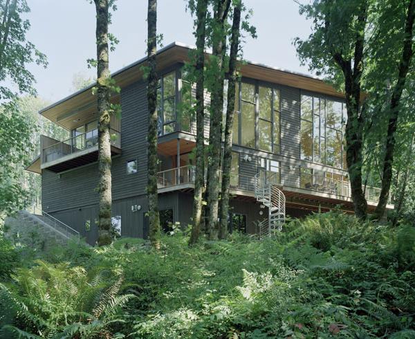 kitchel house 8