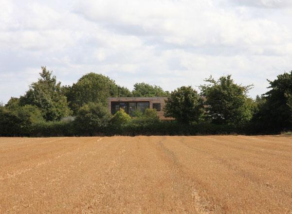 meadowview-residence-5.jpg