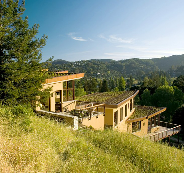 Contemporary Home In Mill Valley, California