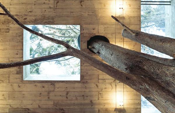 modern-tree-house-4.jpg