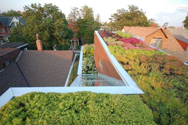 rooftop garden house toronto 6 Rooftop Garden Home Design in Toronto, Canada