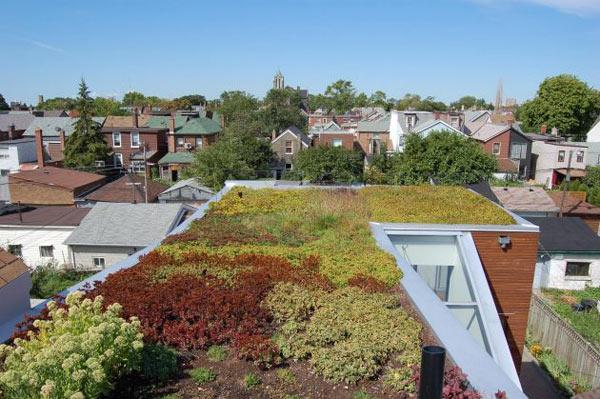 rooftop-garden-house-toronto-7.jpg