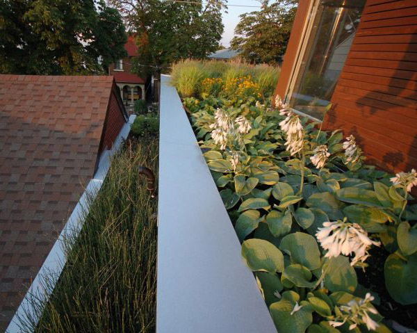 rooftop-garden-house-toronto-9.jpg