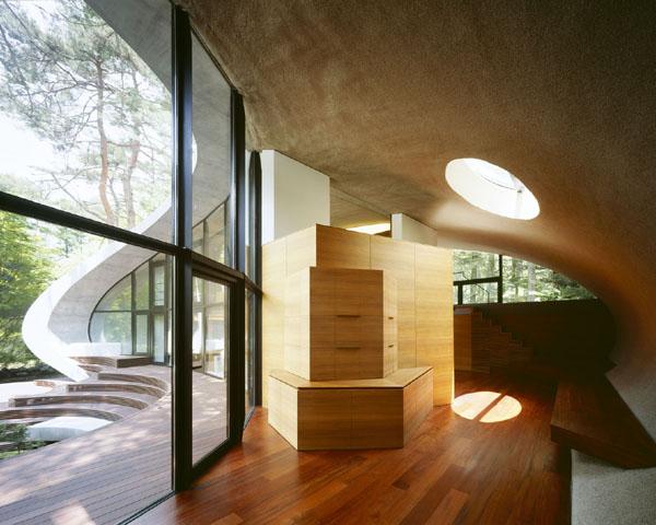 shell-house-13.jpg