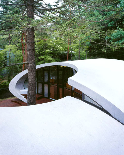 shell-house-6.jpg