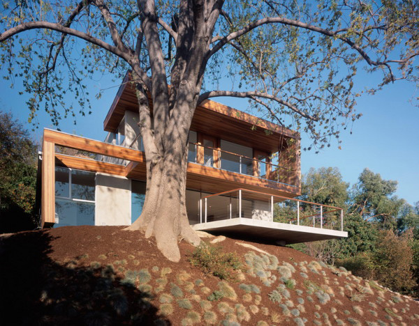 standard tree house 2 Modern Eco Friendly Tree House