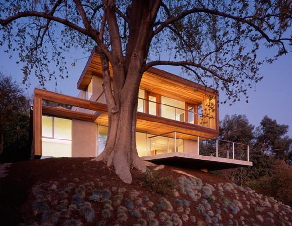 standard-tree-house-7.jpg