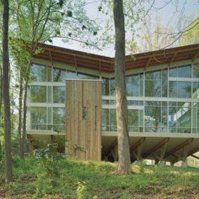 Modern Tree House – Strickland-Ferris Residence