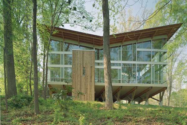 strickland ferris residence 1 Modern Tree House – Strickland Ferris Residence