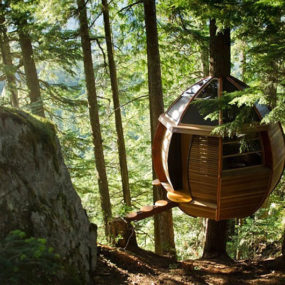 Suspended Wooden Pod Cabin Built Around Tree Trunk