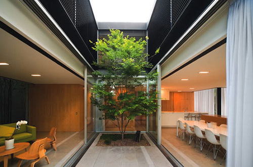szirtes house 2 Modern Residential House Design in Australia, by Chenchow Little Architects   Szirtes has a tree within