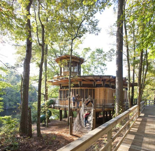 Lakefront Cottage Design Idea Observation Loft: Lakefront Treehouse