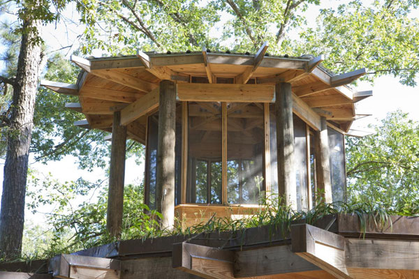 timber-home-designs-treehouse-3.jpg