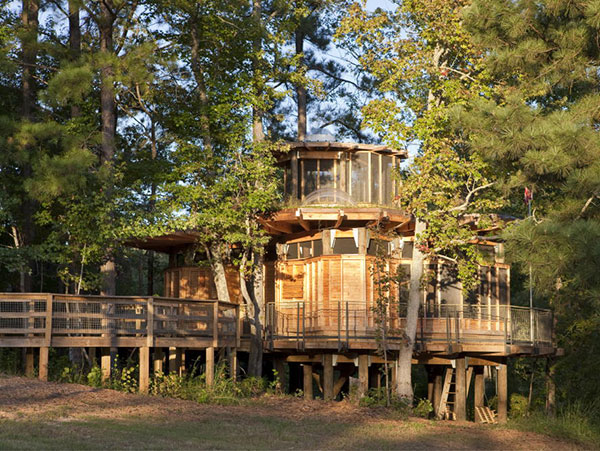 Treehouse Home Designs - Home Design Ideas