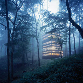 Contemporary Home Amid the Trees – The Ring House